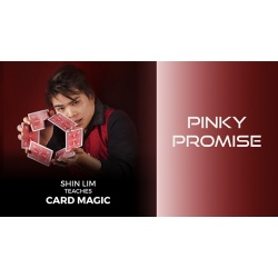 Pinky Promise 1 and 2 by Shin Lim (Single Trick) video...